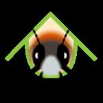 Illustration du profil de Paul B