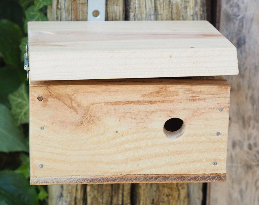 L'Auberge d'abeille sauvage fatiguéé